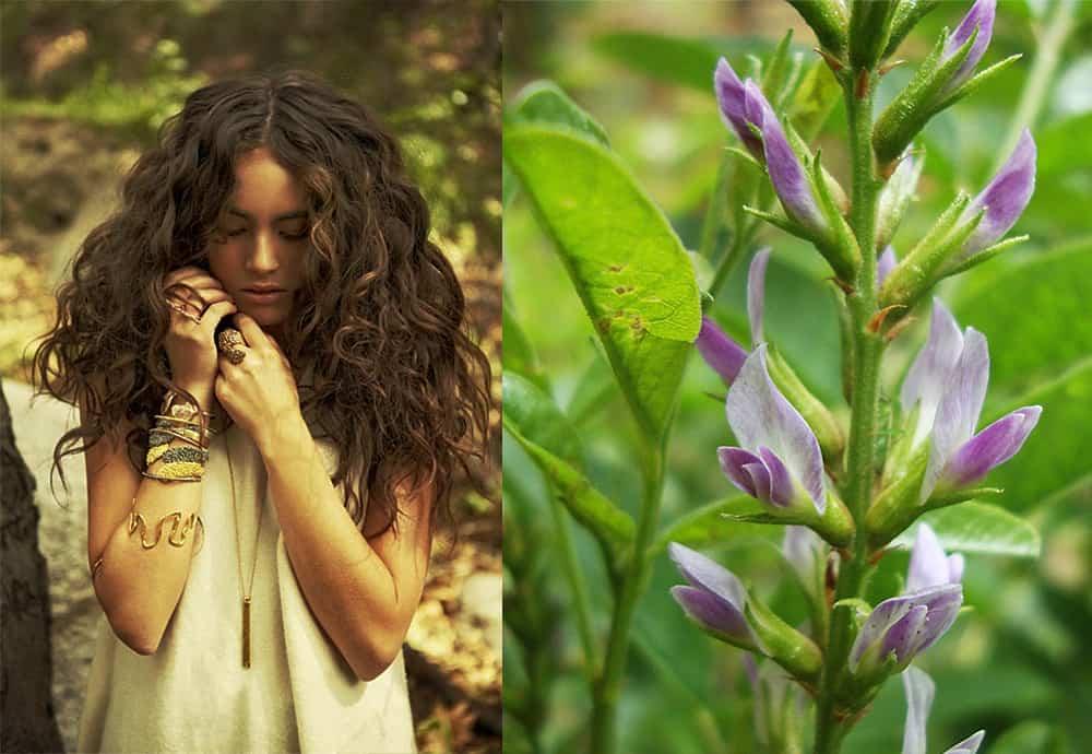 Home-hair-treatment-organic-hair-care-hair-health-Malasia-home hair treatment-Organic hair care
