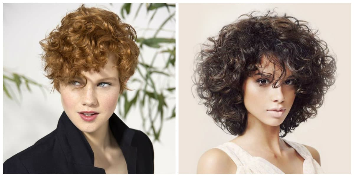 curly hairstyles 2019, garcon curly haircut, patchwork curly haircut